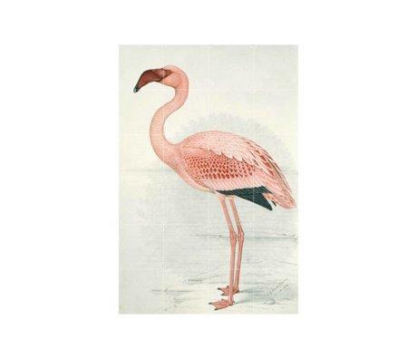 IXXI Wanddekoration Flamingo Finch-Davis kleine Mehrfarben Papier 80x120cm