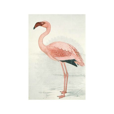 IXXI Wanddecoratie Flamingo Finch-Davis small multicolour papier 80x120cm