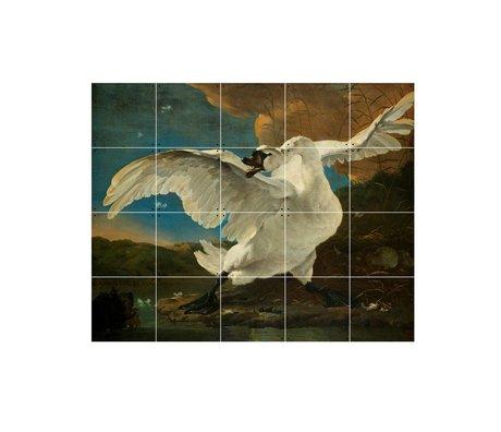 IXXI Décoration murale Asselijn Le papier multicouleurs Menacée Swan S 100x80cm