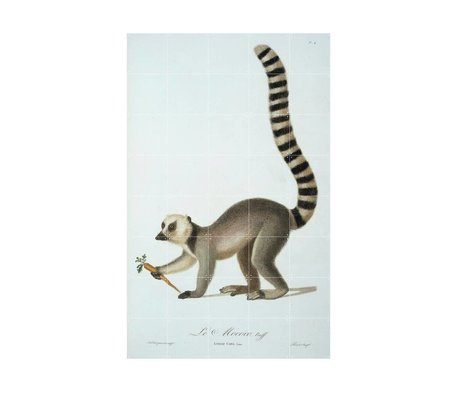 IXXI Wall decoration ring tailed lemur multicolour paper S 80x120cm