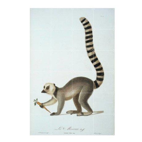 IXXI Wanddecoratie Ring tailed lemur multicolour papier L 100x160cm