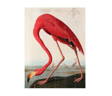 IXXI Décoration murale papier Flamingo Audubon L 120x160cm multicouleur