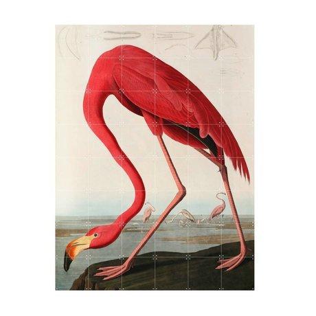 IXXI Wall decoration Audubon Flamingo multicolour paper L 120x160cm