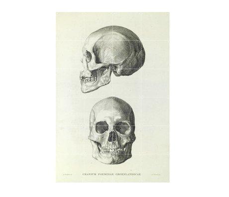 IXXI Wanddecoratie Sandifort The skull grijs wit papier S 80x120cm