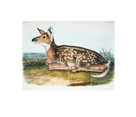 IXXI Wanddekoration Audubon & Bachman Weiß-angebundene Rotwild Mehrfarbenpapier S 80x60cm