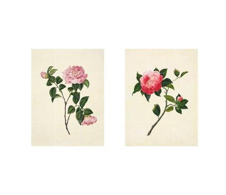 IXXI Décoration murale Reeves Deux fleurs roses ensemble de papier vert de deux S 120x80cm