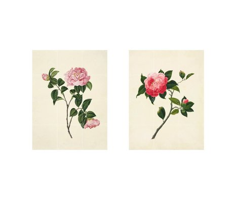 IXXI Wall decoration Reeves Two pink flowers green paper set of two S 120x80cm