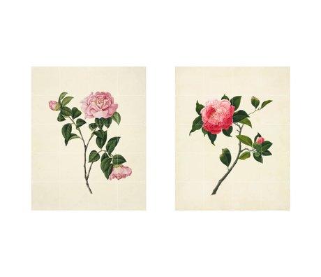 IXXI Décoration murale Reeves Deux fleurs roses ensemble de papier vert de deux L 160x100cm
