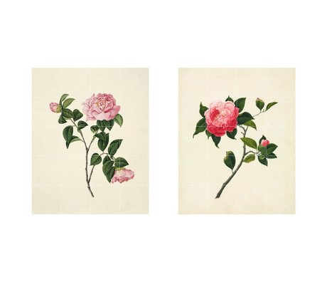 IXXI Wall decoration Reeves Two pink flowers green paper set of two L 160x100cm