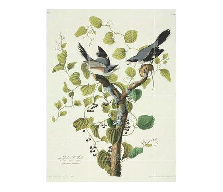 IXXI Wanddecoratie Audubon Loggerhead shrike groen multicolour papier L120x160cm