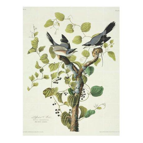 IXXI Wanddekoration Audubon Unechte Würger grün multicolor Papier L120x160cm
