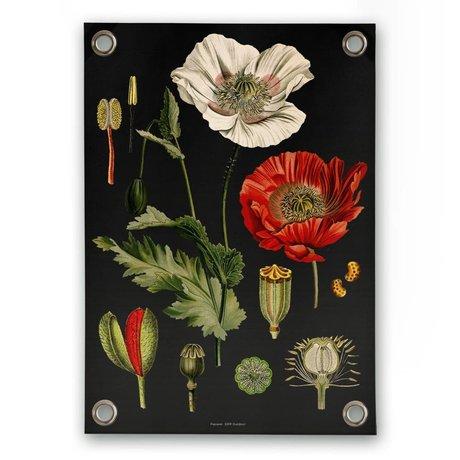 Sipp outdoor Garten-Plakat Mohnblumen mehrfarbiger Kunststoff Vinyl S 50x70cm