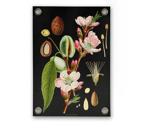 Garten-Plakat Mandel Mehrfarben Vinyl Kunststoff S 50x70cm