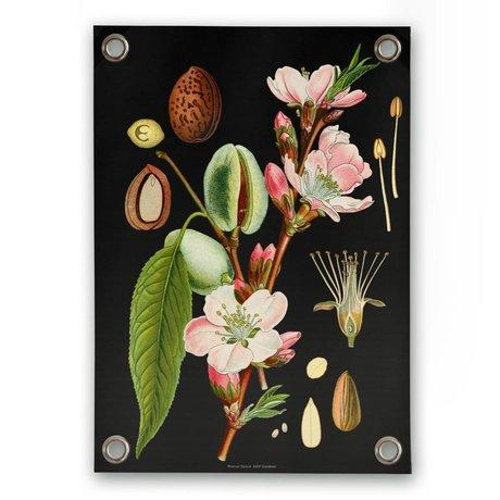 Sipp outdoor Garten-Plakat Mandel Mehrfarben Vinyl Kunststoff S 50x70cm