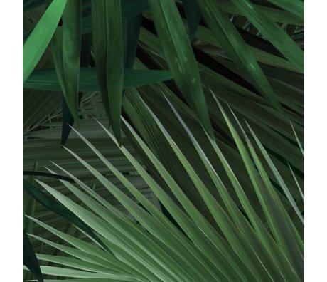 KEK Amsterdam Behang Tropisch Palmbladeren groen vliespapier 97,4x280cm