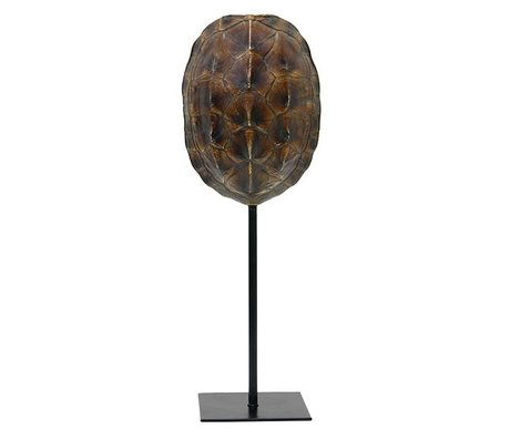 HK-living Kunstmatige schildpaddenschild bruin kunststof 12,5x10x36cm
