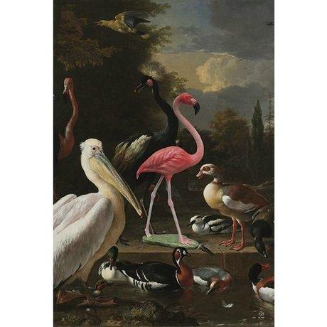 Arty Shock Peinture Melchior d'Hondecoeter - la plume flottante XL multicolore Plexiglas 150x225cm