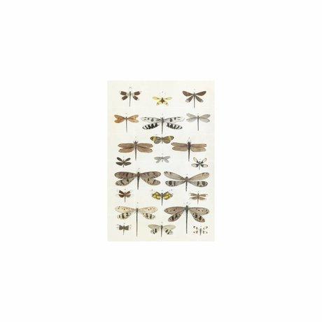 IXXI Wanddekoration Libellen Mehrfarbenpapier S 80x120cm