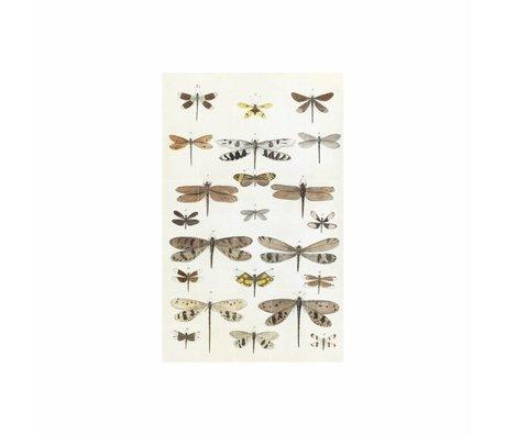 IXXI Wanddekoration Libellen Mehrfarbenpapier L 100x160cm