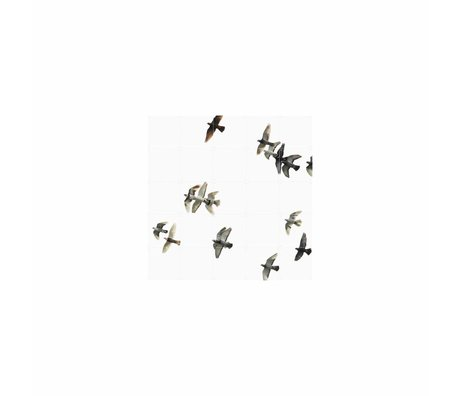 IXXI Wall decoration Birds black and white paper S 100x100cm