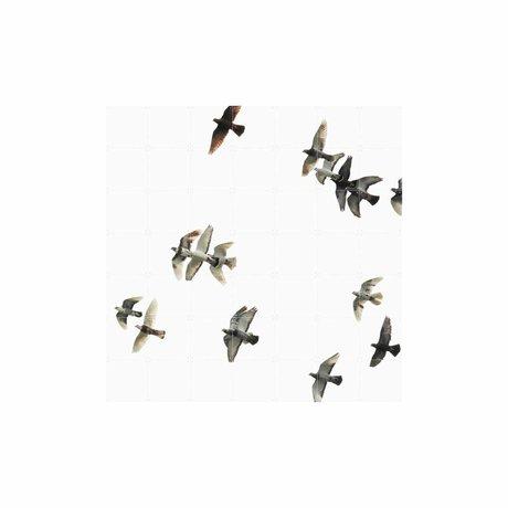 IXXI Wanddecoratie Birds zwart wit papier L 140x140cm