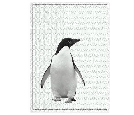pt, Torchon pingouin coton noir et blanc 50x70cm