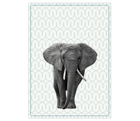 pt, Tea cloth elephant black and white cotton 50x70cm