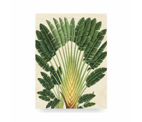 KEK Amsterdam Houten paneel Botanical Palm M 60x80cm