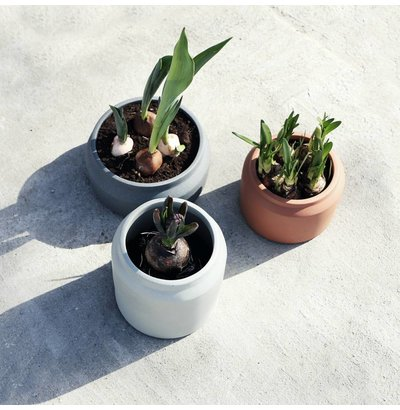 Bloem- en plantenbakken