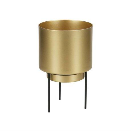WOOOD Topf für Pflanze Guus Messing Gold Metall Ø11,5x17cm
