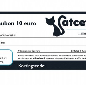 Gift Certificate Catcetera