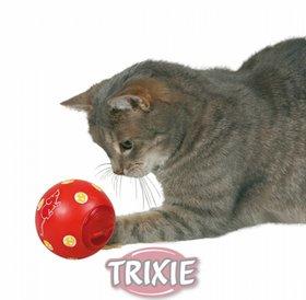 Snacky Ball Activity