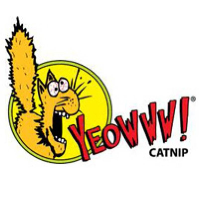 Yeowww! Catnip, the best there is!