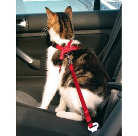 Trixie Safety harnass for cats