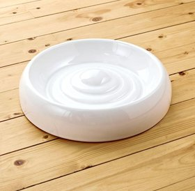 Lucky Kitty Ceramic food bowl