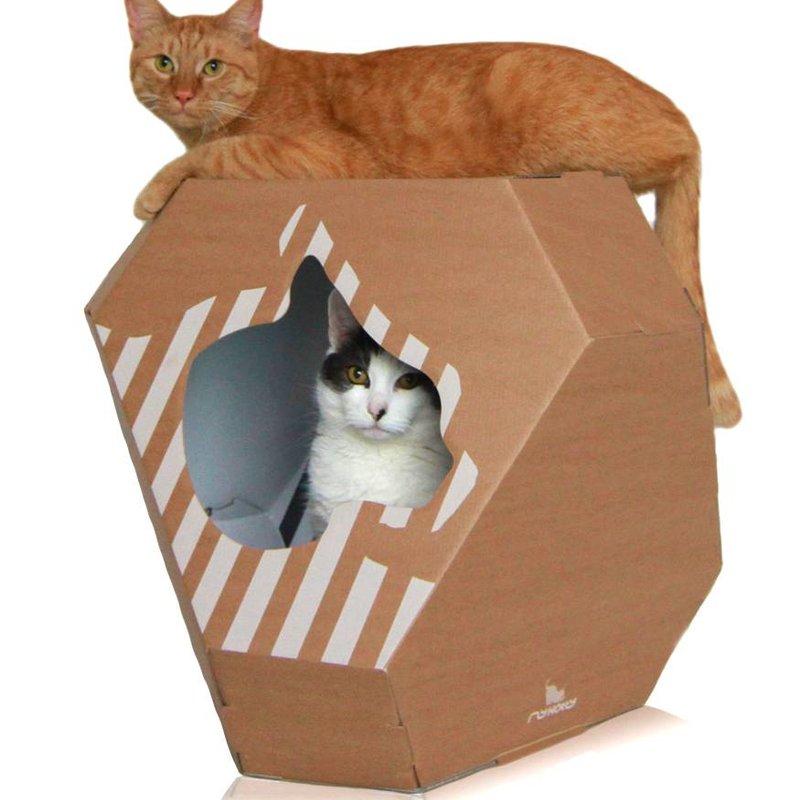 MyKotty Mia Cathouse