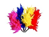 Flying Frenzy Feather Fury