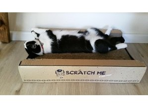 Scratch me if you can