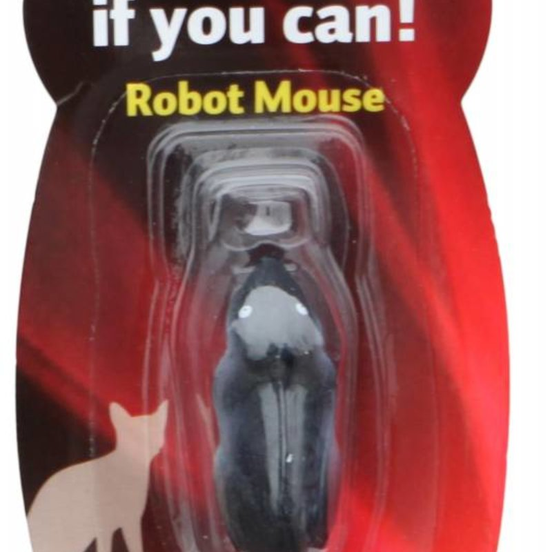 Robot Mouse