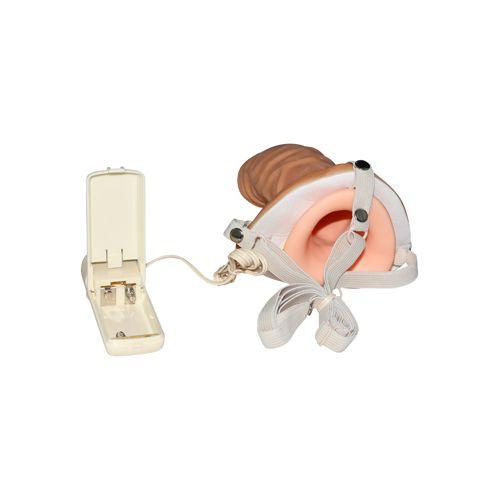 De strap on met holle, realistische vibrator is een geweldige oplossing als jij je partner wilt laten ...