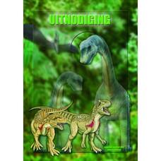 Uitnodigingen Dino (8st)