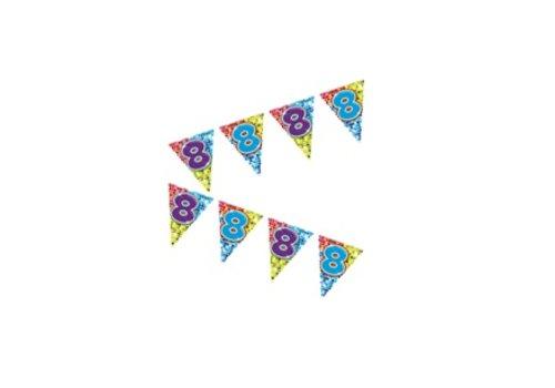 mini vlaggenlijn 8 jaar
