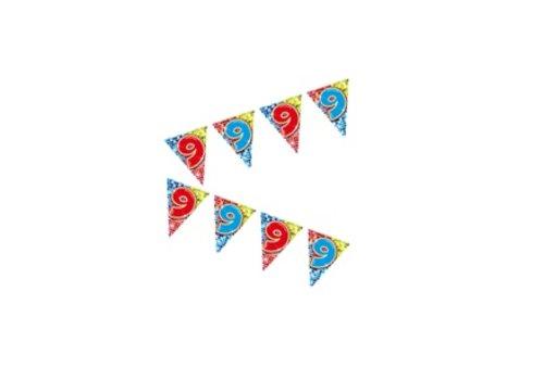 mini vlaggenlijn 9 jaar