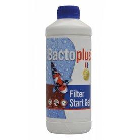 Bactoplus Filter zu starten Gel