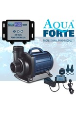 AquaForte DM Vario-Serie Pond / Filterpumpen