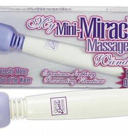 Mini Miracle Vibrator