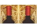 Houtwol voor 2-vaks wijnkist (opvulmateriaal)