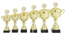 The cheapest and most beautiful sports trophies including free graveerplaatjes order here!