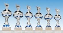 HK 361 series sport trophy