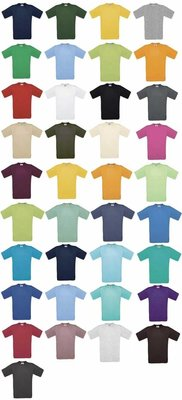 100% katoenen T-shirts (in 37 verschillende kleuren leverbaar, maten S t/m XXL)